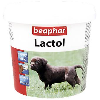 Beaphar Lactol (Dogs , Supplements)