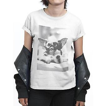 Gremlins Unisex Adult Gizmo Photograph T-Shirt