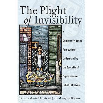La situazione dell'invisibilità