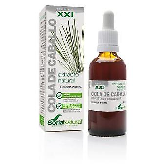 Soria Natural Common Horsetail Extract 21st Century (Herboristeria , Natural extracts)