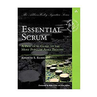 Scrum essenziale: Una guida pratica per il processo Agile più popolare (Addison-Wesley Signature Series (Cohn))
