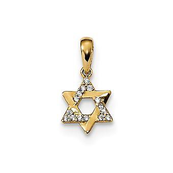 14k for boys or girls CZ Cubic Zirconia Simulated Diamond Religious Judaica Star of David Pendant Necklace