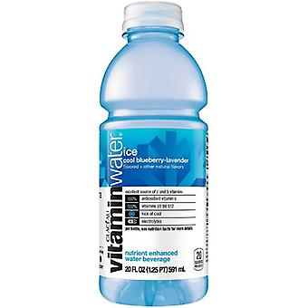 Vitamin Water Ice Cool Blueberry -( 591 Ml X 12 Bottles )