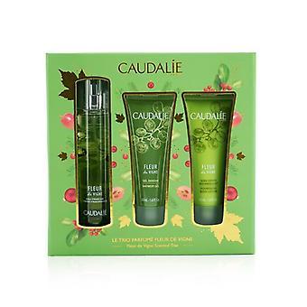 Caudalie Fleur De Vigne Christmas Coffret: Fresh Fragrance Spray 50ml + Shower Gel 50ml + Body Lotion 50ml (Light Green Line) 3pcs