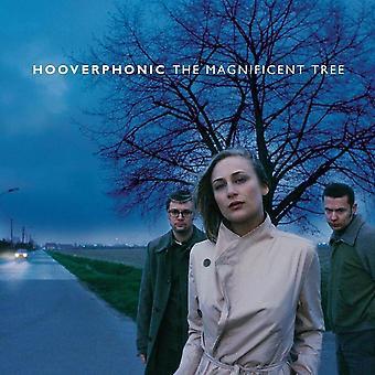 Hooverphonic - Het prachtige boomvinyl