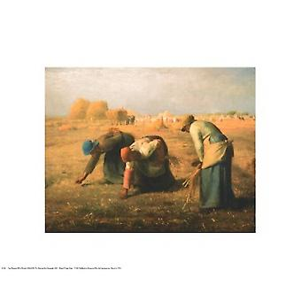 Gleaners Poster Print by Jean Francois Millet (20 x 16)