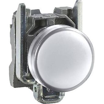 Schneider Electric XB4BVB1 Indicator light White 24 V DC, 24 V AC 1 pc(s)