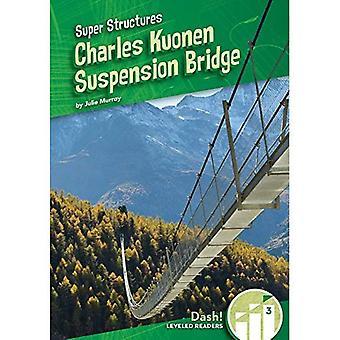 Charles Kuonen hangbrug (Super structuren: Dash!, herverdeeld lezers, niveau 3)