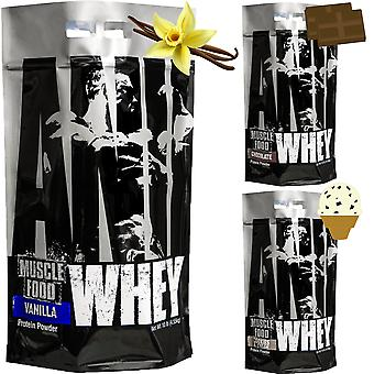 Universal Nutrition Animal Whey Isolate Loaded Protein Powder - 135 Portionen