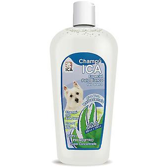 Ica Champú Pelo Blanco 400 Aloe Vera (Perros , Higiene y peluquería , Champús)