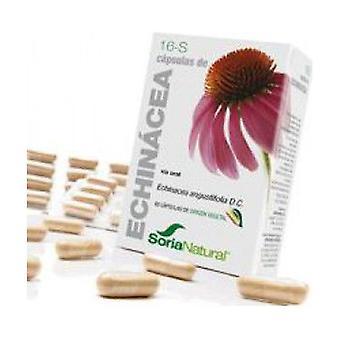 16 S Echinacea (XXI Formula) 30 capsules