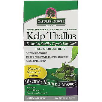 Nature's Respuesta, Kelp Thallus, 100 Cápsulas Veggie