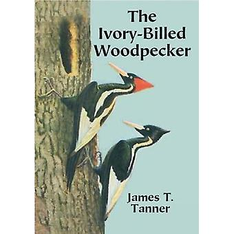 The IvoryBilled Woodpecker by Tanner & James T.