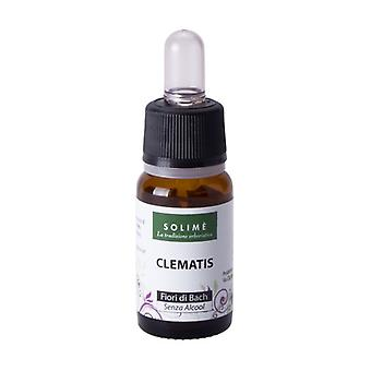 Bach flowers - Clematis 10 ml