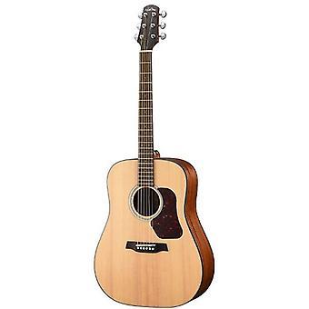 Walden d550e w/gig bag natura solide épinette top dreadnought acoustic-electric guitar - open pore satin natural
