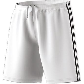 Adidas Condivo 18 CF0711 training all year men trousers