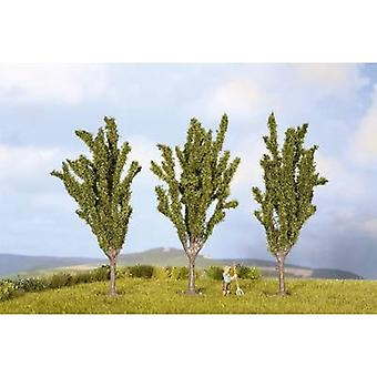 NOCH 25525 boom set Poplars 55 tot 55 mm groen 3 PC (s)