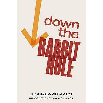 Down the Rabbit Hole by Juan Pablo Villalobos - Rosalind Harvey - Ada