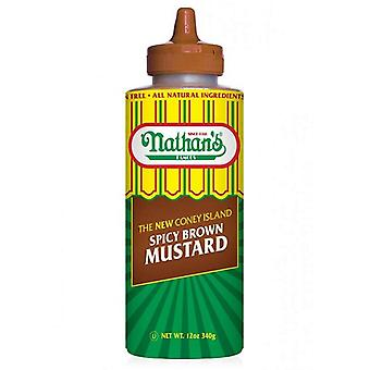 Nathan-apos;s Famous The New Coney Island Spicy Brown Mustard