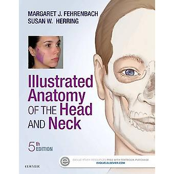 Illustrated Anatomy of the Head and Neck by Margaret Fehrenbach