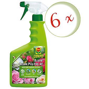 Sparset: 6 x COMPO Duaxo® Roses Mushroom-Free AF, 750 ml