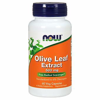 Agora Alimentos Extrato de Folha de Oliveira, 500 mgs, 60 Vcaps