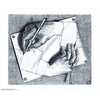 Tekening handen - MC Escher Poster Poster afdrukken
