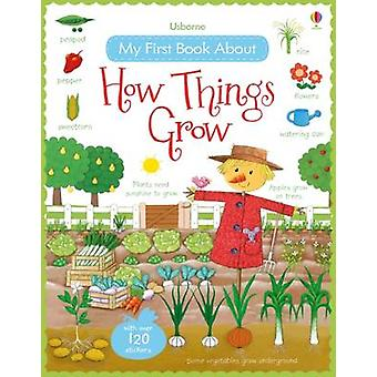 My First Book About How Things Grow by Felicity Brooks - Rosalinde Bo