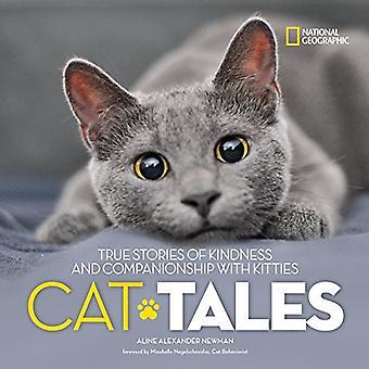 Katt sagor