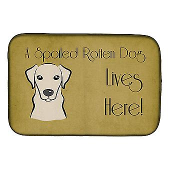 Gul Labrador bortskjemt hund bor her Dish tørking mat