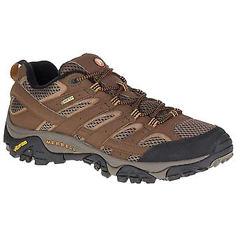 Merrell Earth Mens Moab 2 GTX Walking Shoe