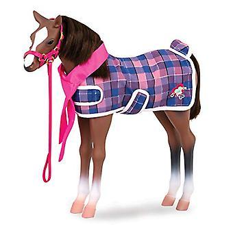 Onze generatie kwart paard veulen