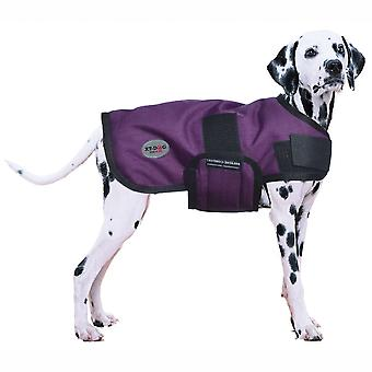 Xt-Dog Abrigo Winter (Perros , Ropa , Abrigos y Capas)