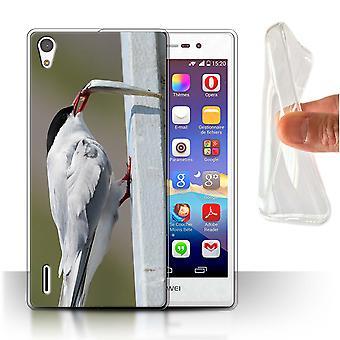 STUFF4 Gel TPU Case/Cover for Huawei Ascend P7 LTE/Arctic Bird/Tern/Arctic Animals