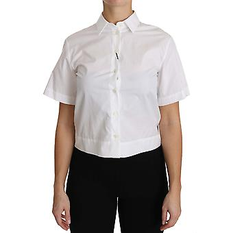 Dolce & Gabbana White Cotton Blouse Short Sleeve Shirt TSH2958-36