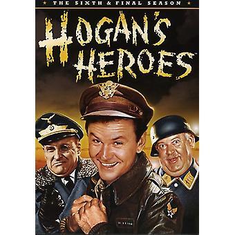 Héroes de Hogan - héroes de Hogan: importación de USA de la temporada 6 [DVD]