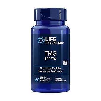 TMG 60野菜カプセル