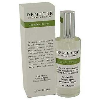 Demeter Cannabis Flower By Demeter Köln Spray 4 Oz (naiset) V728-549059