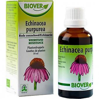 Biover Echinacea Purpurea 50 ml