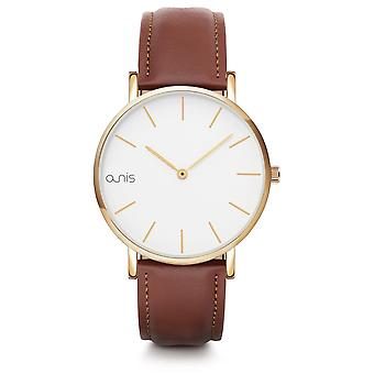 A-nis watch aw100-18