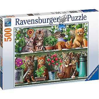 Ravensburger 14824 Cats on The Shelf 500 Piece Jigsaw