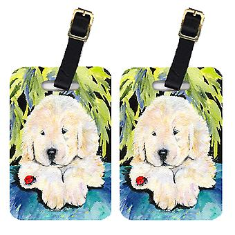 Carolines Treasures  SS8271BT Pair of 2 Golden Retriever Luggage Tags