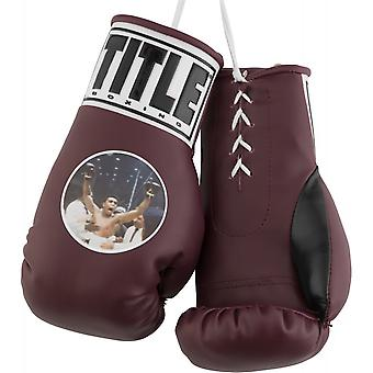 Title Boxing 7