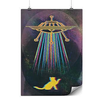 Matte or Glossy Poster with Color Cat Abduction | Wellcoda | *y2663
