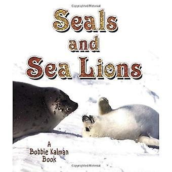 Seals and Sea Lions (Living Ocean)