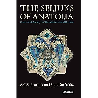 Seljuks of Anatolia the