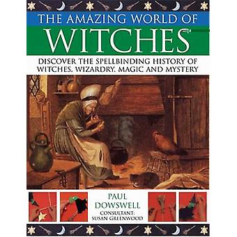 Amazing World of Witches by Paul Dowswell - 9781844766697 Book