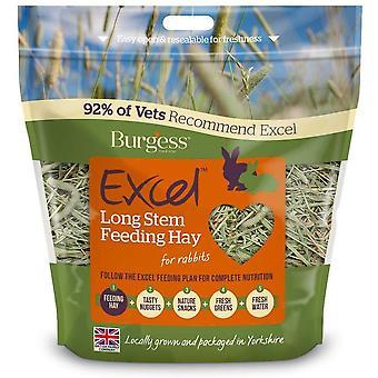 Foin d'alimentation à tige longue Excel - 1kg