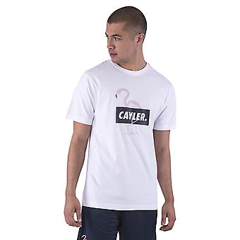 CAYLER & SONS Men's T-Shirt WL Camingo