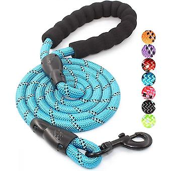 5 Ft Dog Leash With Comfortable Padded Handle And Reflective Threads(Blue)